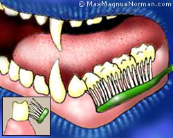 Cure sensitive teeth: Brush your teeth the right way.